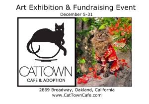 Cat Town Promo Joann Biondi