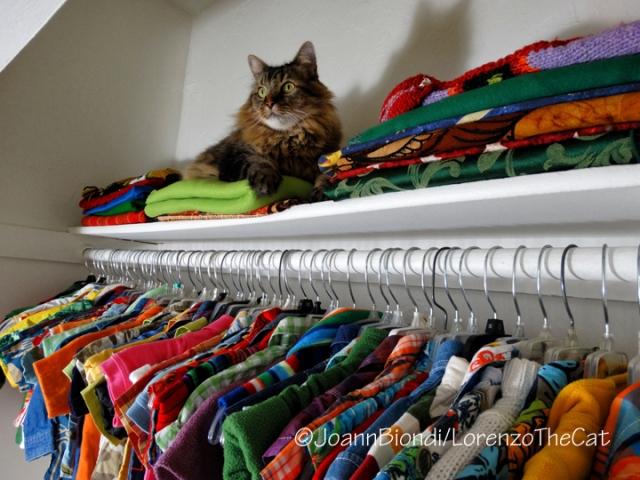 Lorenzo's Closet